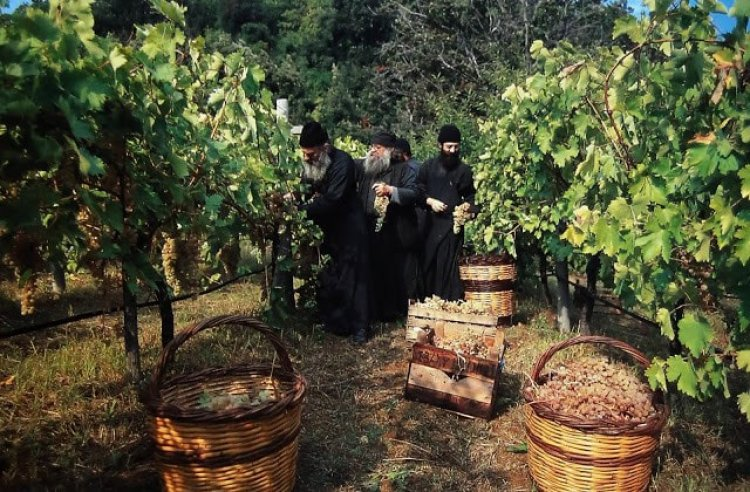 Молитва ради благослова вина